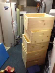 Hive Boxes 2